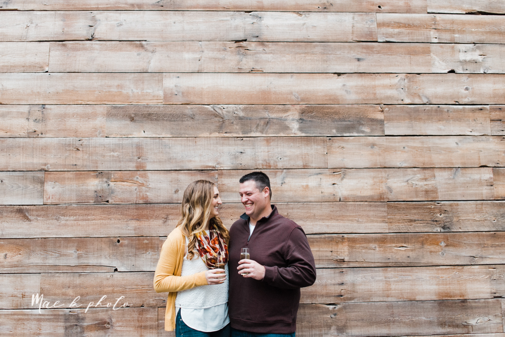 erin and shawn's fall Cleveland winery engagement session at sapphire creek winery photographed by youngstown wedding photographer mae b photo-37.jpg