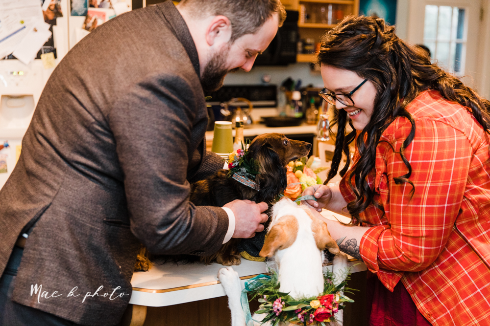 kaitlin and brad's offbeat winter harry potter the hobbit lord of the rings themed wedding at mapleside lodge in brunswick ohio photographed by youngstown wedding photographer mae b photo-210.jpg