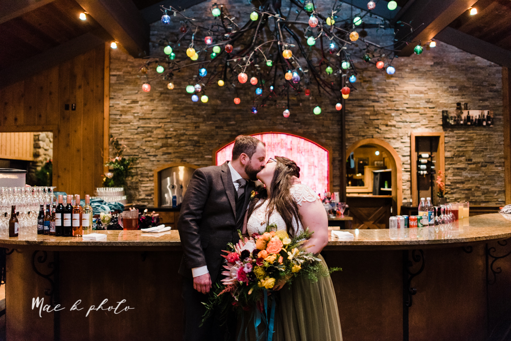 kaitlin and brad's offbeat winter harry potter the hobbit lord of the rings themed wedding at mapleside lodge in brunswick ohio photographed by youngstown wedding photographer mae b photo-98.jpg