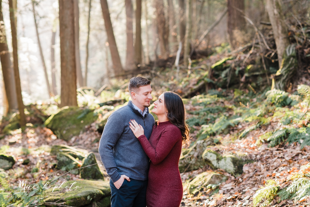 shelby and tyler's winter engagement session in northeast ohio at the cinderella bridge silver bridge and lanterman's mill in mill creek park in youngstown ohio photographed by youngstown wedding photographer mae b photo-10.jpg