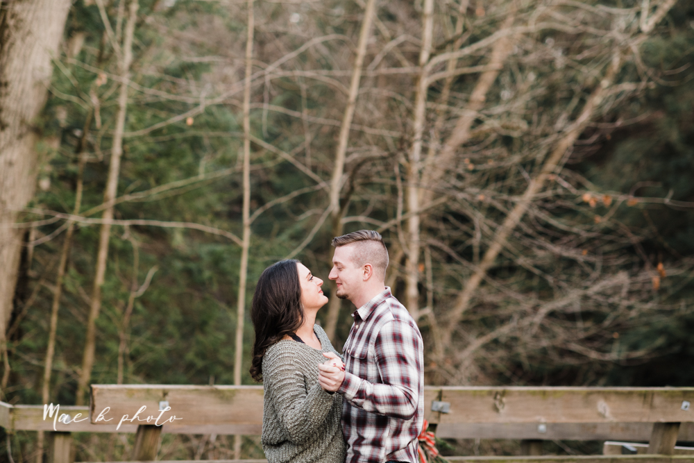 shelby and tyler's winter engagement session in northeast ohio at the cinderella bridge silver bridge and lanterman's mill in mill creek park in youngstown ohio photographed by youngstown wedding photographer mae b photo-44.jpg