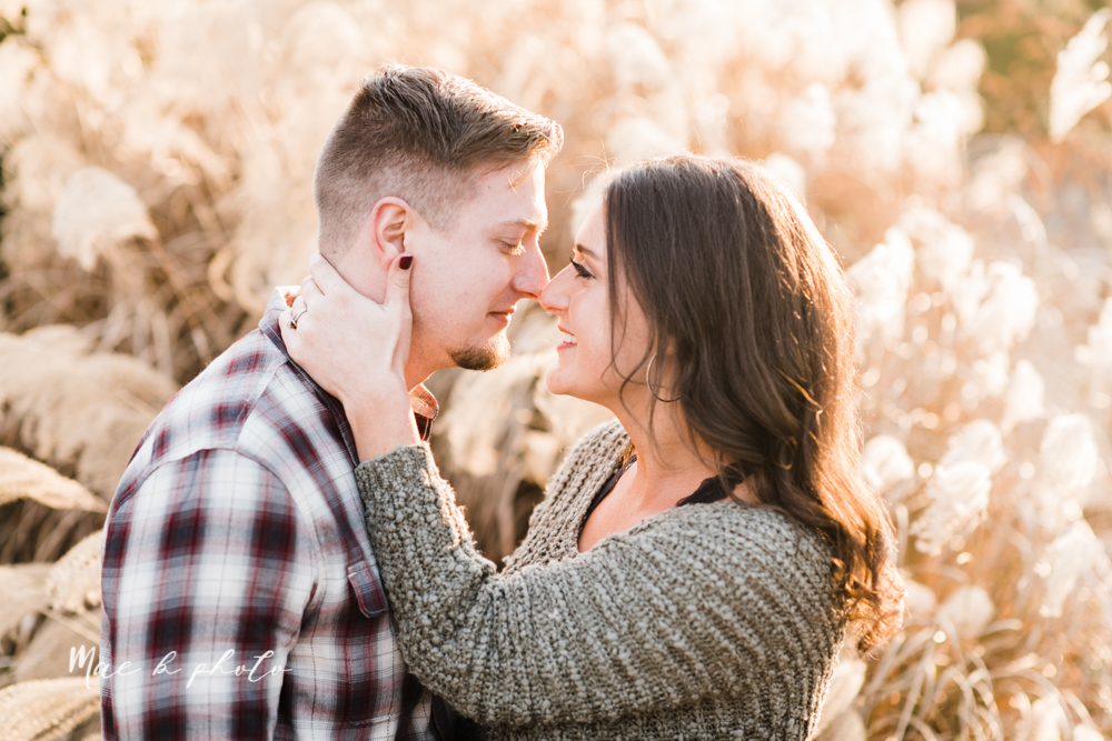 shelby and tyler's winter engagement session in northeast ohio at the cinderella bridge silver bridge and lanterman's mill in mill creek park in youngstown ohio photographed by youngstown wedding photographer mae b photo-34.jpg