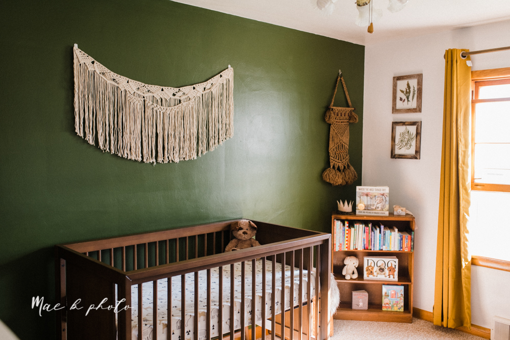 earthy gender neutral woodsy woodland themed nursery with game of thrones, guardians of the galaxy, diy crafts, where the wild things are and photography details and decor photographed by youngstown wedding photographer mae b photo-21.jpg