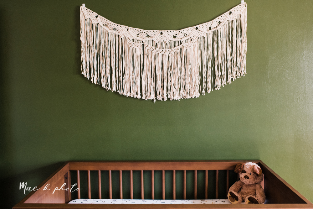 earthy gender neutral woodsy woodland themed nursery with game of thrones, guardians of the galaxy, diy crafts, where the wild things are and photography details and decor photographed by youngstown wedding photographer mae b photo-16.jpg