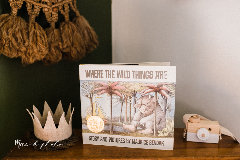 earthy gender neutral woodsy woodland themed nursery with game of thrones, guardians of the galaxy, diy crafts, where the wild things are and photography details and decor photographed by youngstown wedding photographer mae b photo-11.jpg