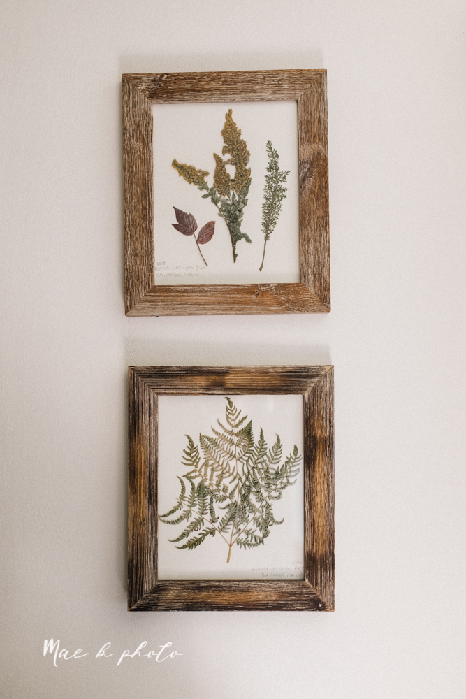 earthy gender neutral woodsy woodland themed nursery with game of thrones, guardians of the galaxy, diy crafts, where the wild things are and photography details and decor photographed by youngstown wedding photographer mae b photo-12.jpg