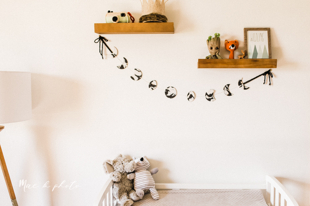 earthy gender neutral woodsy woodland themed nursery with game of thrones, guardians of the galaxy, diy crafts, where the wild things are and photography details and decor photographed by youngstown wedding photographer mae b photo-7.jpg