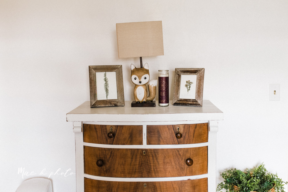 earthy gender neutral woodsy woodland themed nursery with game of thrones, guardians of the galaxy, diy crafts, where the wild things are and photography details and decor photographed by youngstown wedding photographer mae b photo-5.jpg