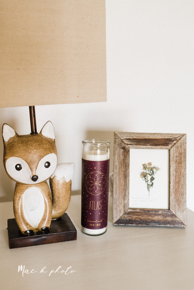 earthy gender neutral woodsy woodland themed nursery with game of thrones, guardians of the galaxy, diy crafts, where the wild things are and photography details and decor photographed by youngstown wedding photographer mae b photo-6.jpg