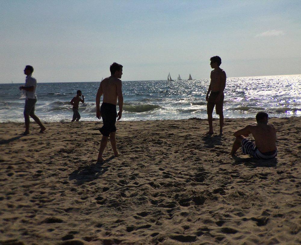 Copy of Venice Beach