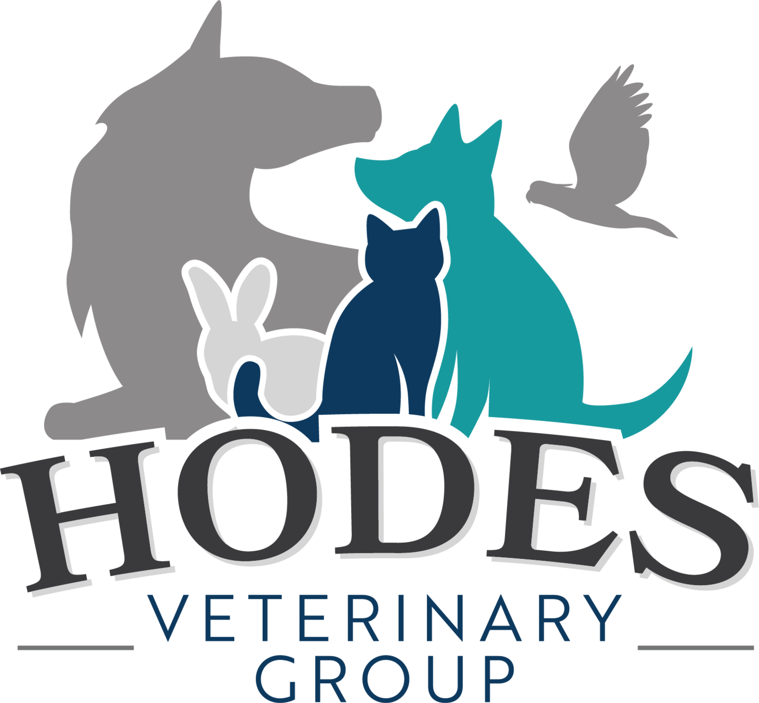 Hodes Veterinary Group
