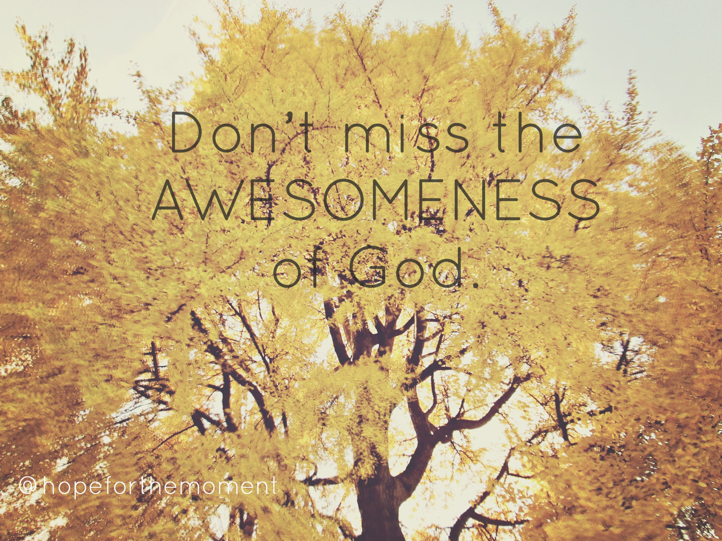 don't miss God