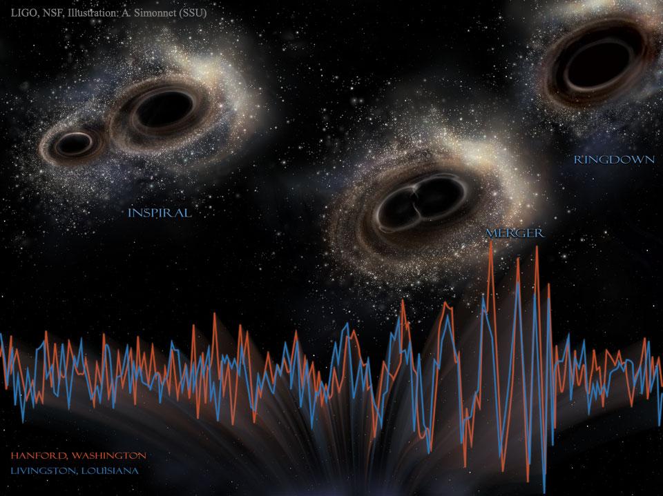 Gravitational wave signal detected by LIGO. Image credit: LIGO, NSF, Aurore Simonnet (Sonoma State U.)