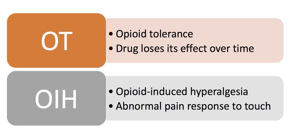 Figure 1. Comparing opioid tolerance (OT) & opioid-induced hyperalgesia (OIH).  Image Credit:  Kaleab Tessema