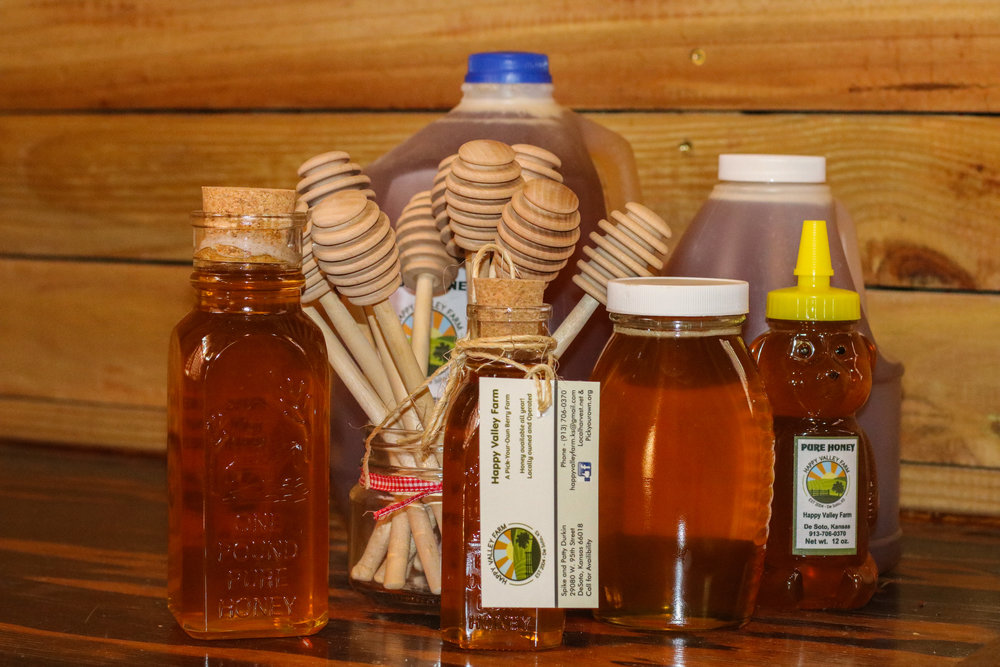 honey collection 1.jpg