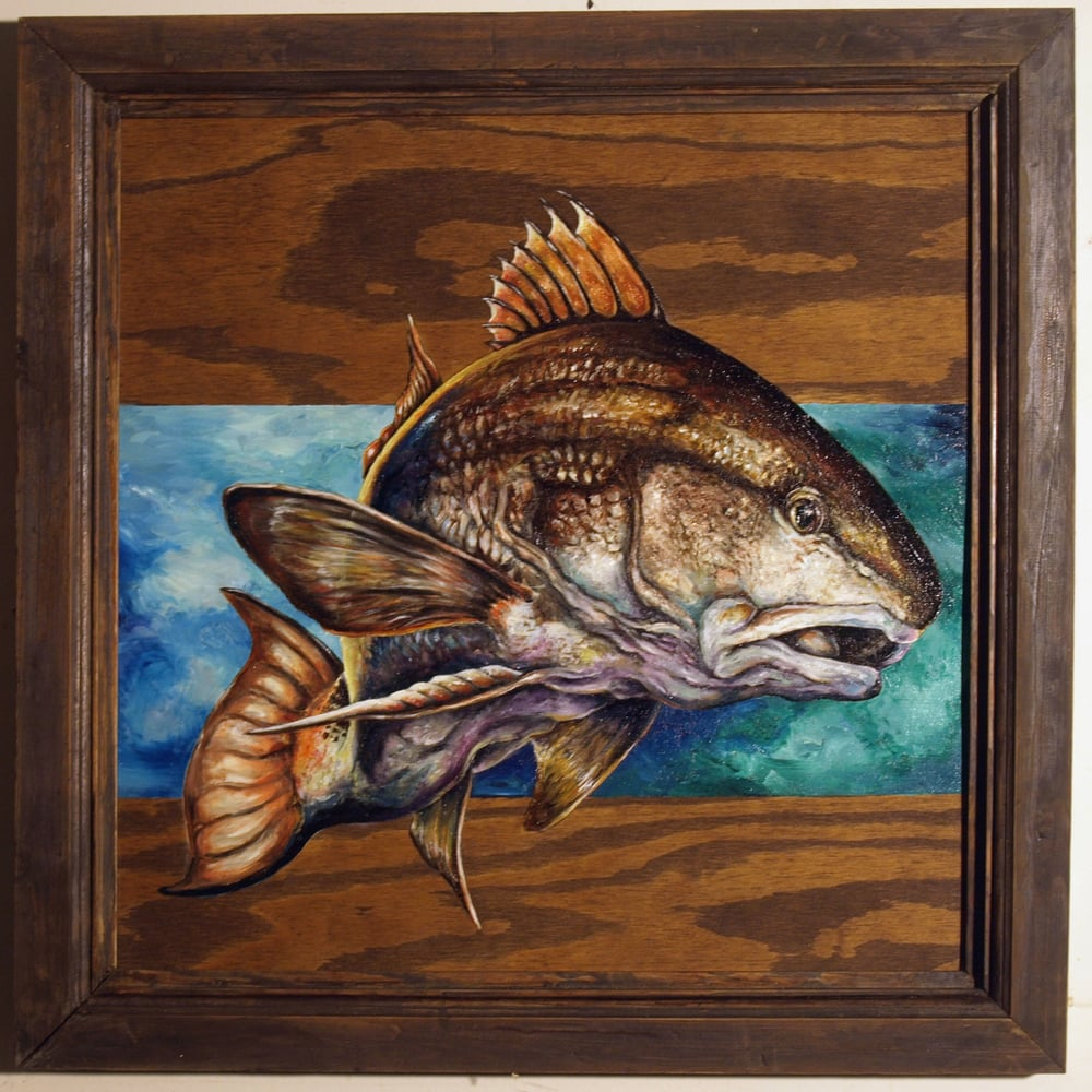 """Red Drum"" - oil on wood + handcrafted frame - $300 USD"