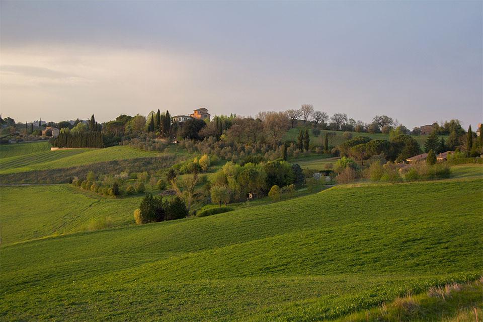 Toscana_1.jpg