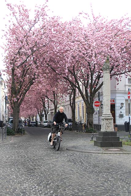 Bonn, Alemania. Primavera 2017.