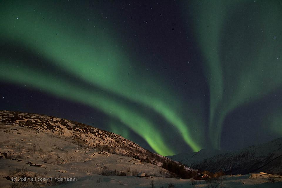 Aurora_5.jpg
