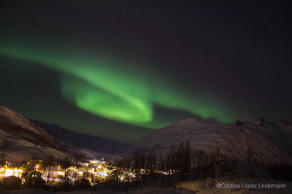 Aurora_9.jpg