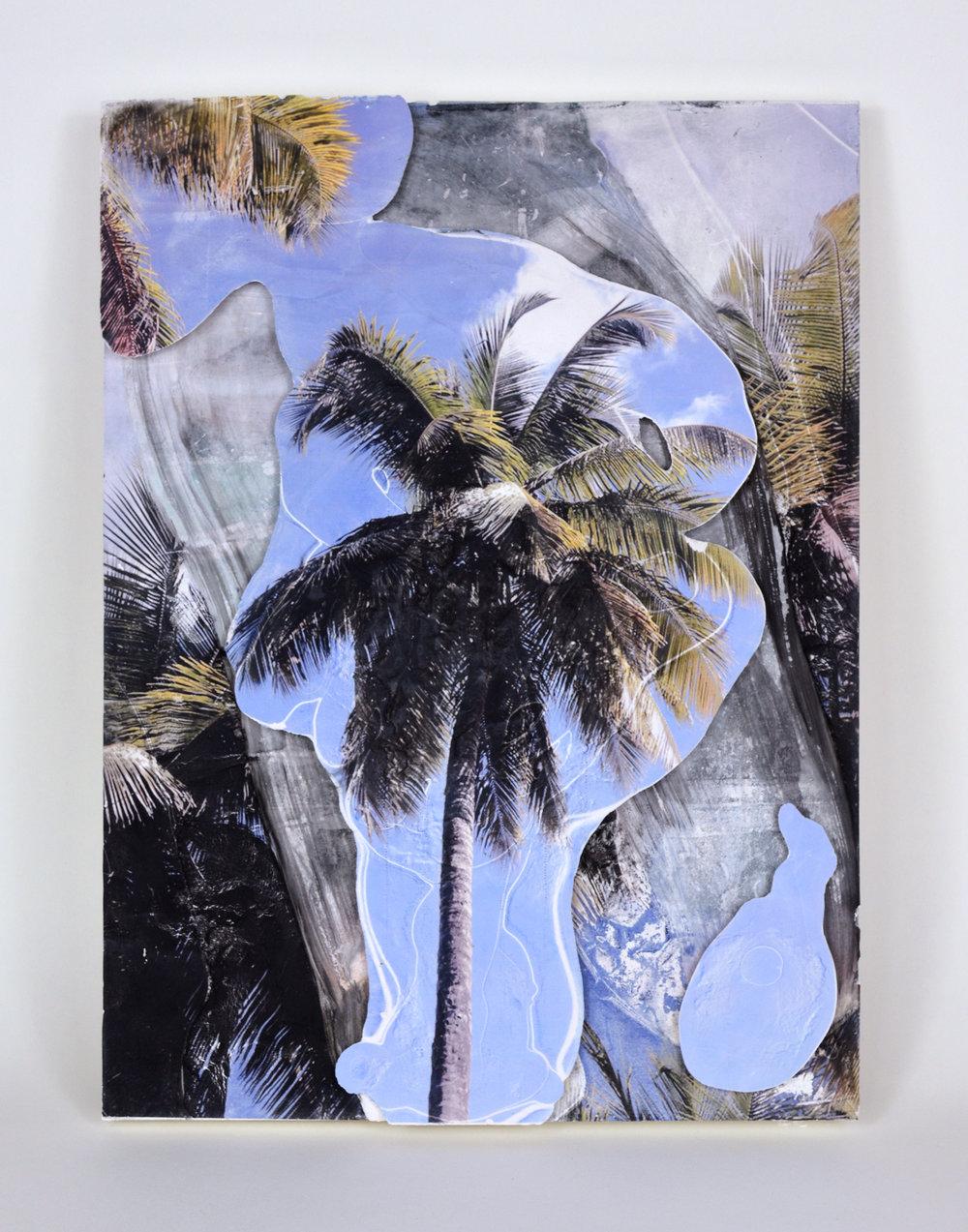 palm layers.jpg