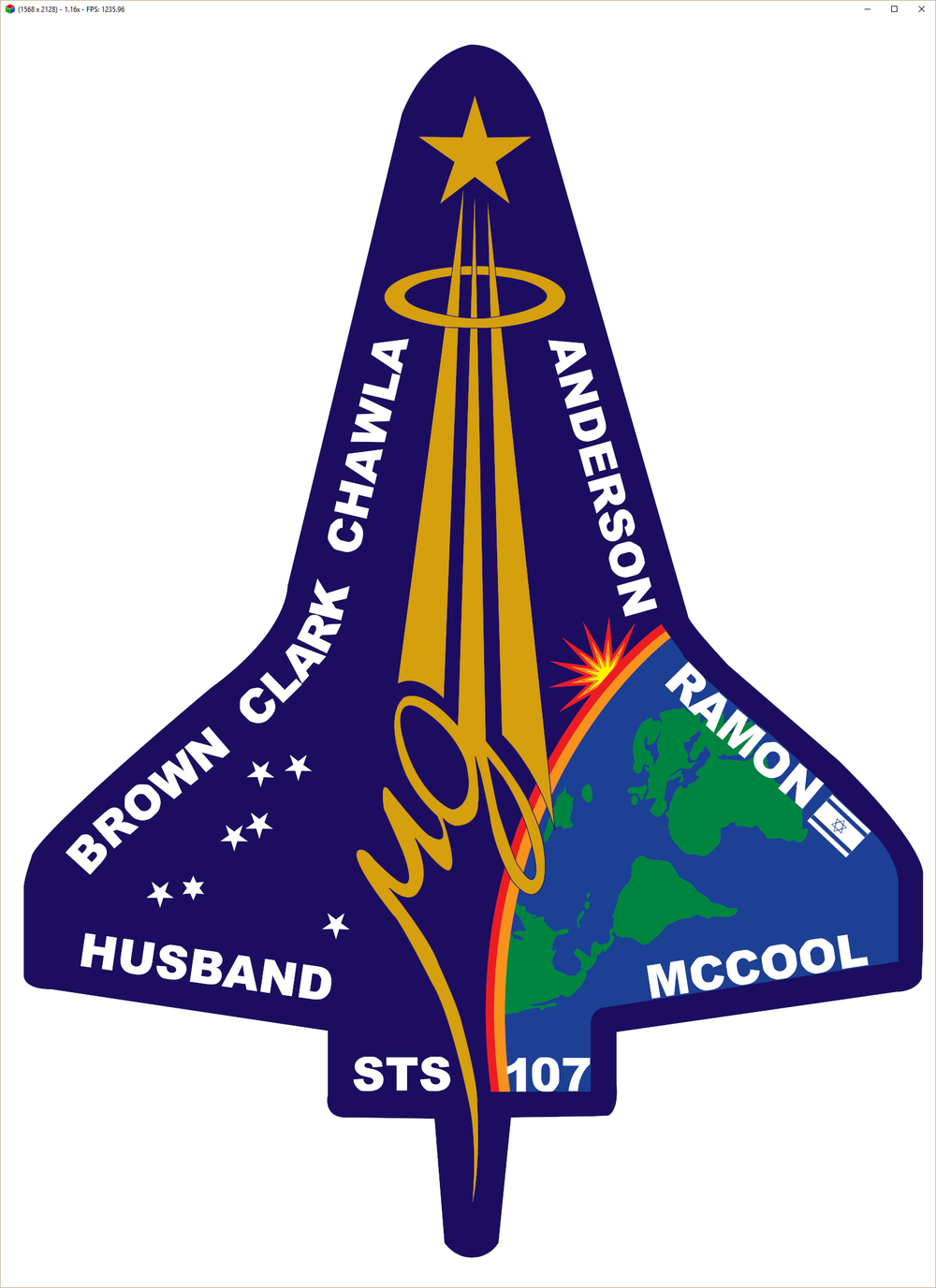 STS_107.png
