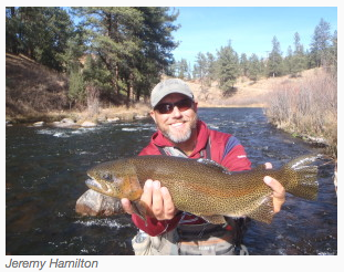 Fly_Fishing_Golden_Jeremy_Hamilton.png