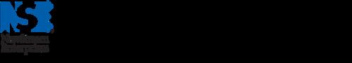 NewStream Enterprises Logo