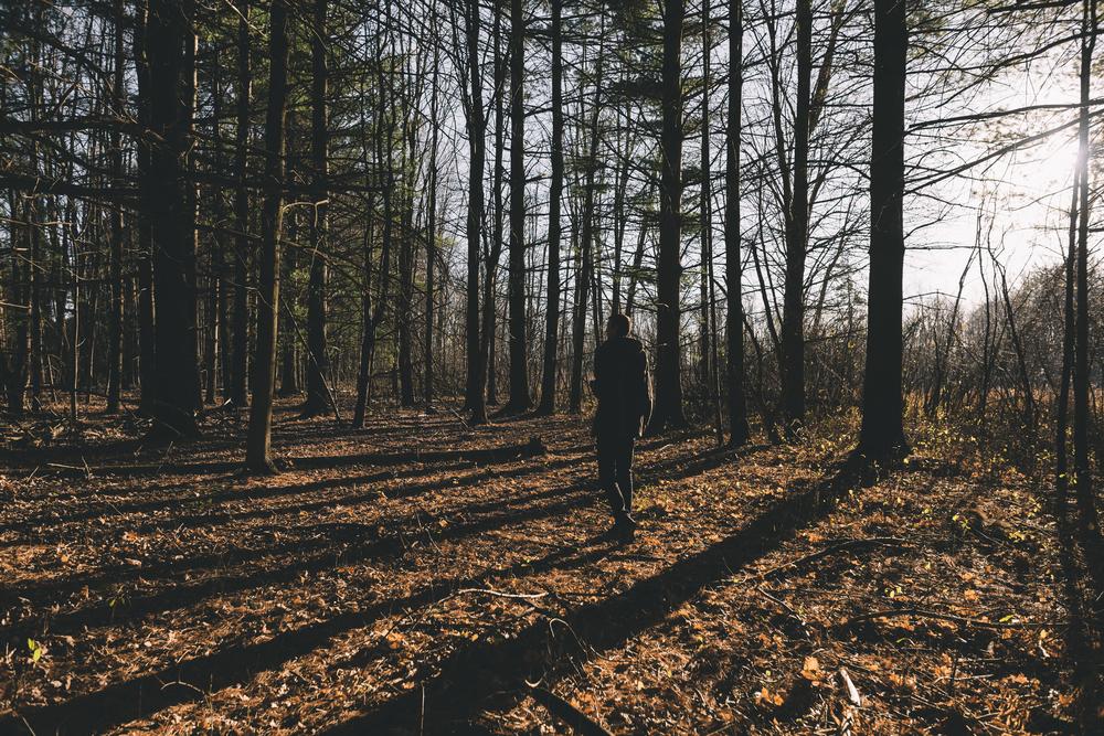 Jason G  forest ranger.jpg