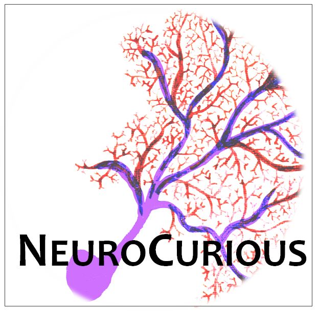 NeuroCurious