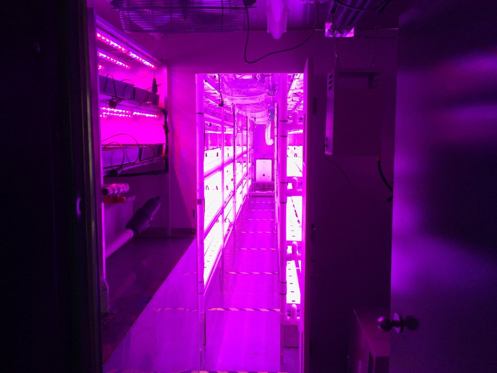 Grow year-round - high EFFICIENCY LED Lights