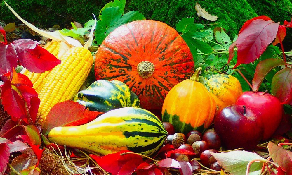 Pixabay - Autumn