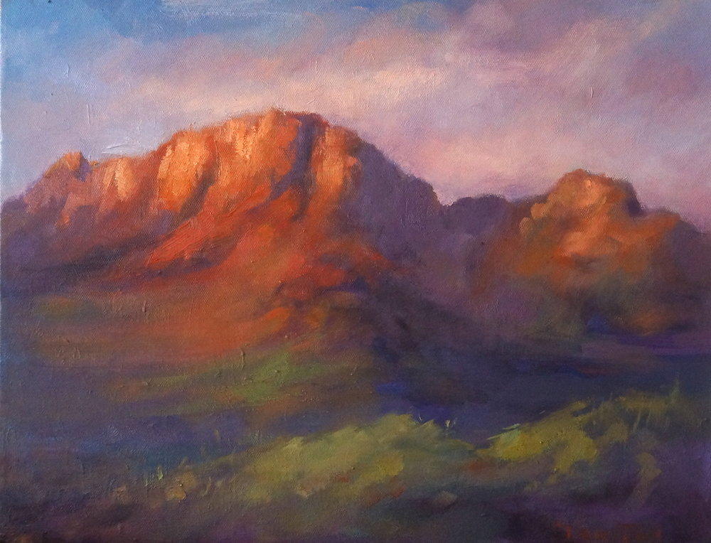 Stellenbosch (oil)