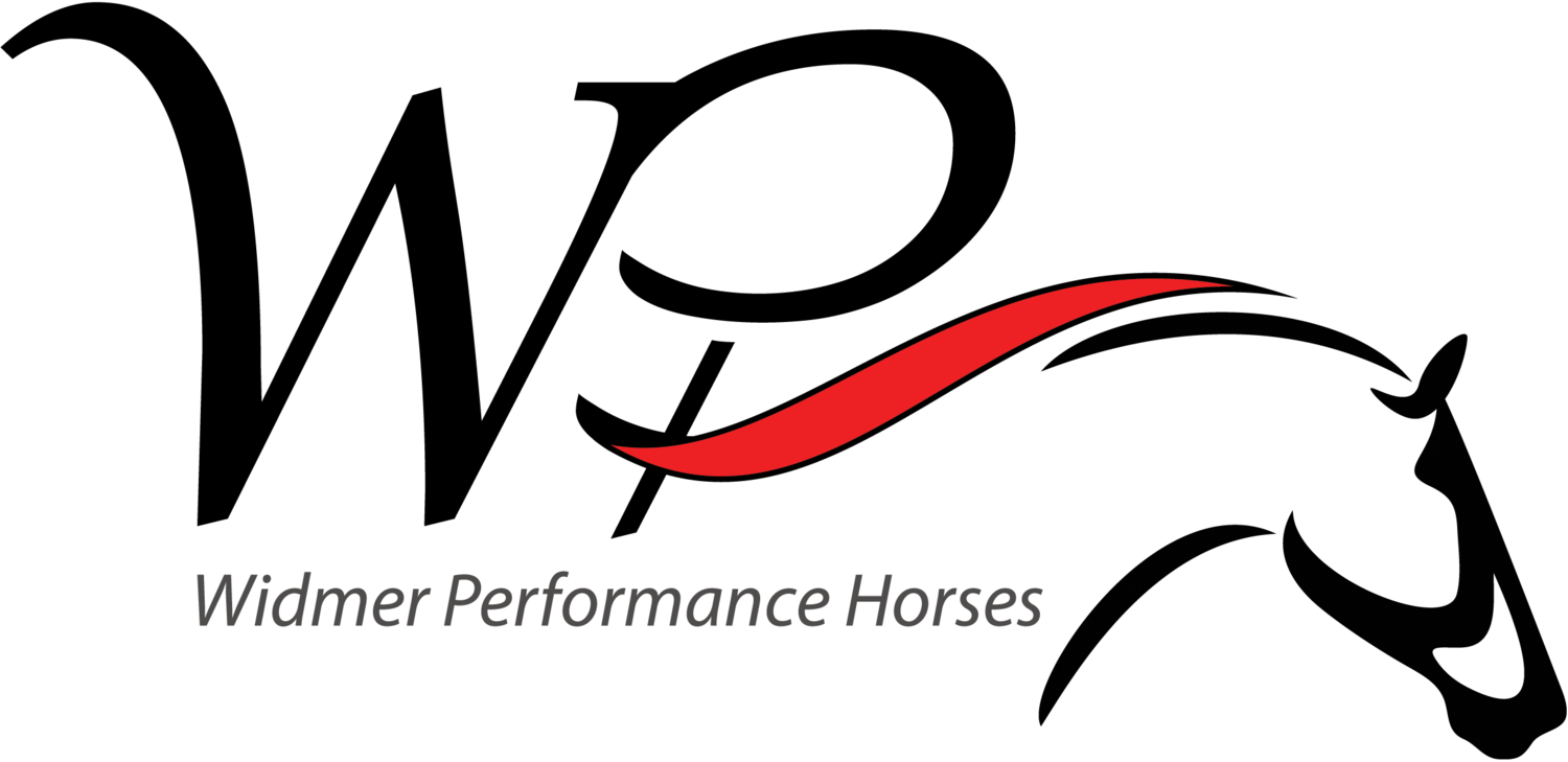 Widmer Performance Horses - Barrel Horse Training and Sales