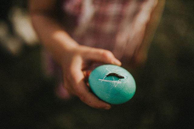 Easter things, Nashville 2018 ➕➕➕➕➕➕➕➕➕➕➕➕➕➕➕➕➕➕➕➕ #memphisfamilyphotographer #familylifestylephotographer #thebloomforum #letthembelittle #lemonadeandlenses