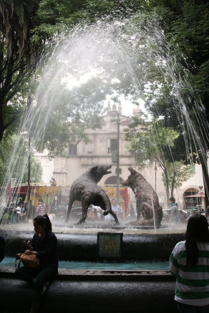 coyoacan fountain, mexico city