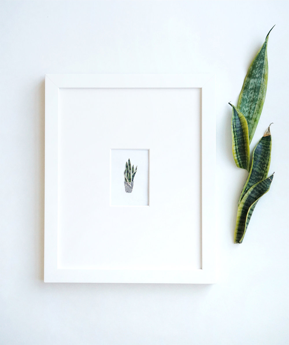 Tara Galuska Snake Plant Artwork.jpg