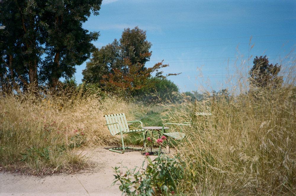 toriaezu-landscape-1.JPG