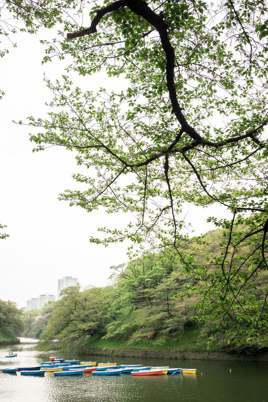 Chidori-ga-fuchi Park