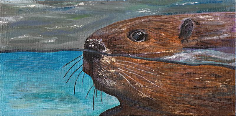 Beaver - SOLD