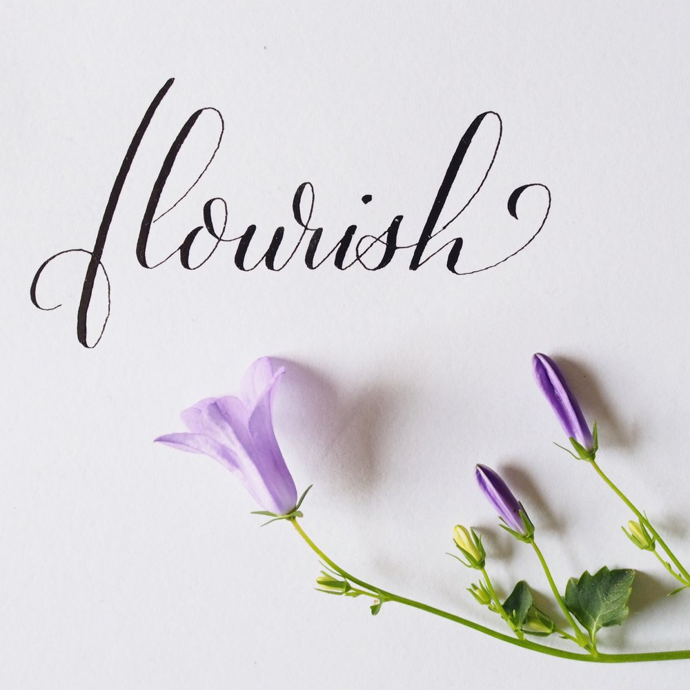 flourish_inkysquare