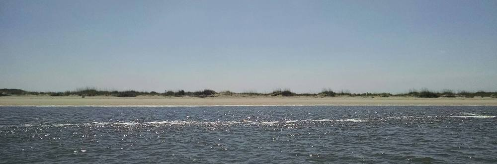 IPC - beach.jpg