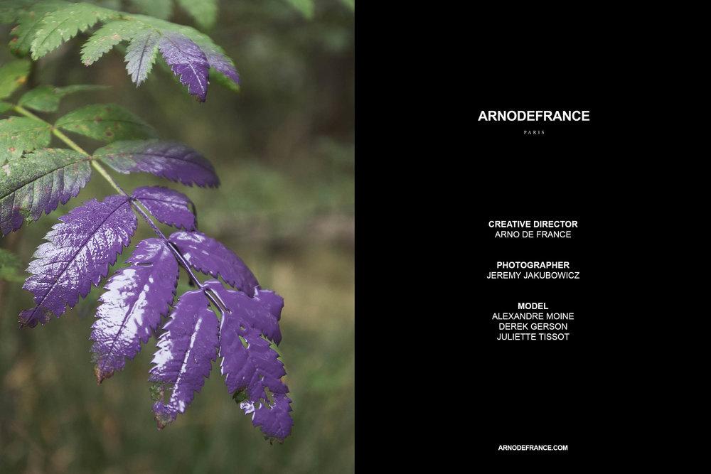 ARNODEFRANCE - LAST.jpg
