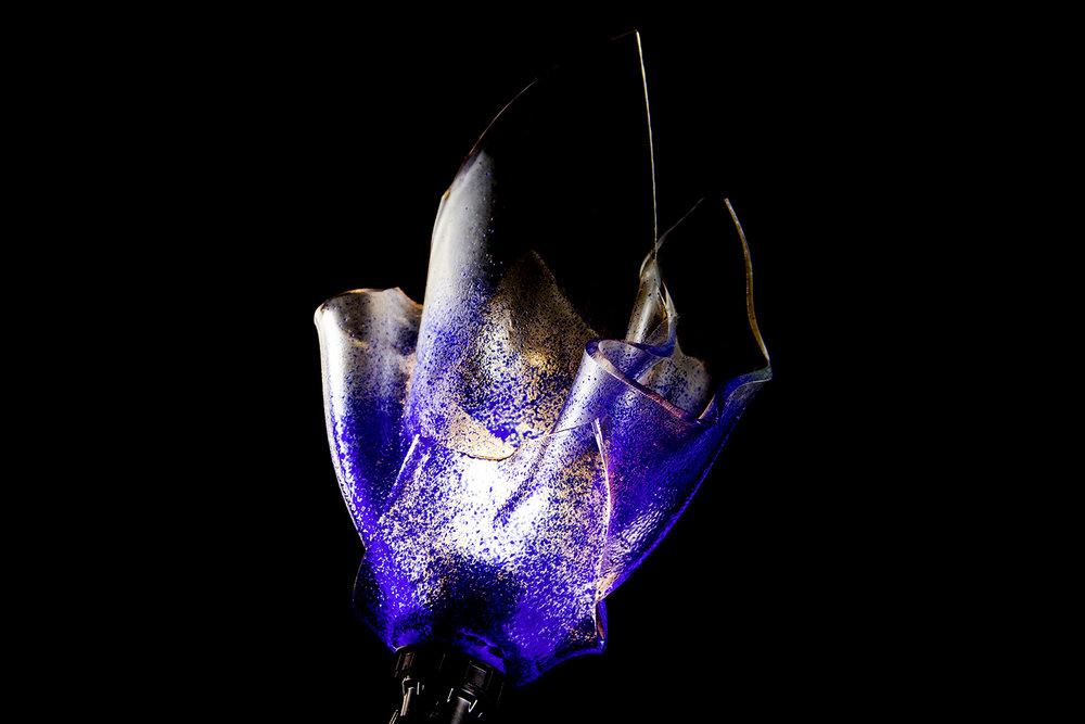Blauw_1500px.jpg