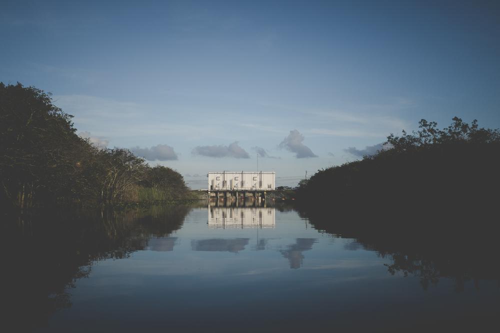 Dwyer_Everglades-6.jpg