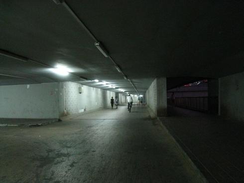 ruexviii480.jpg