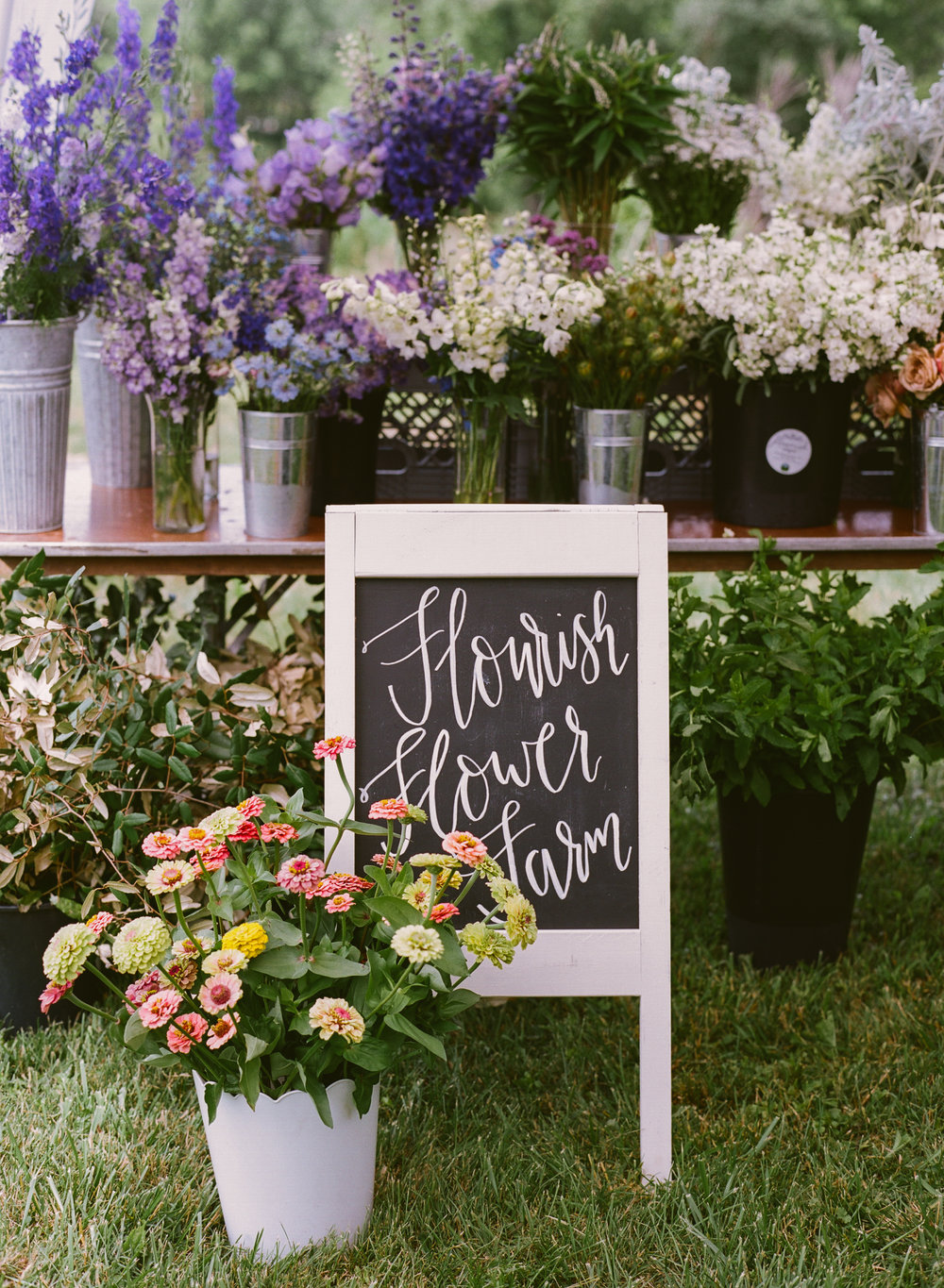 Shop Flourish Flower Farm