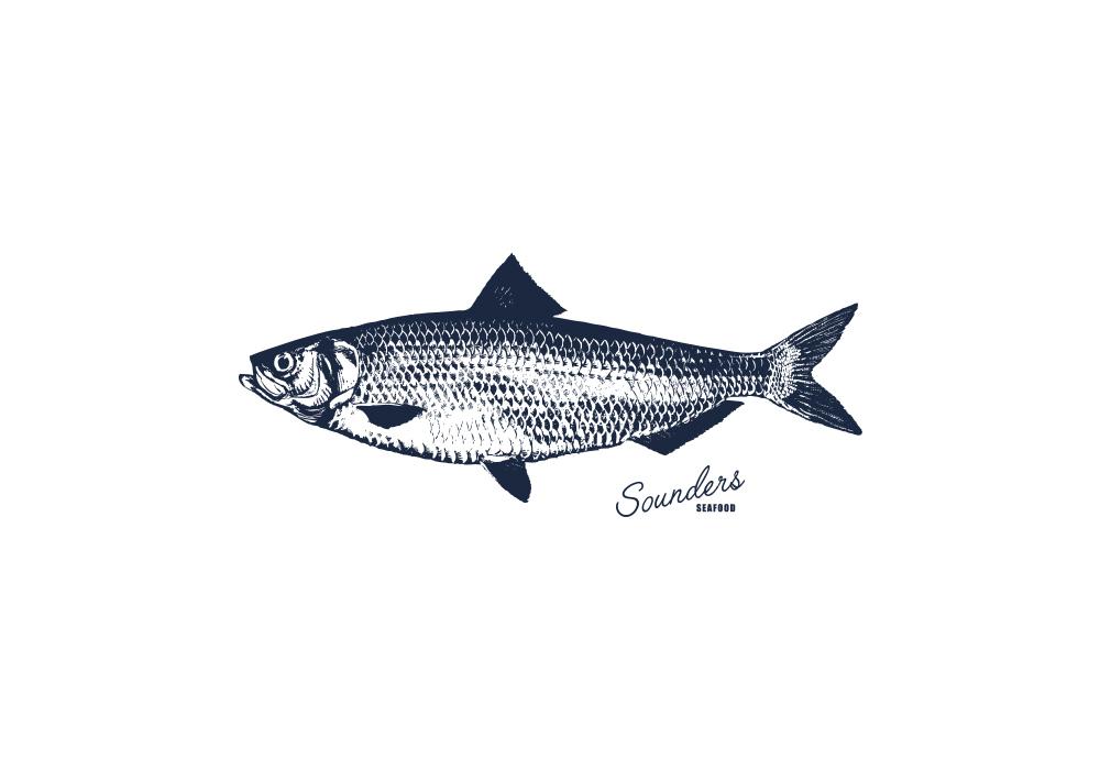 Sounders_fish.jpg