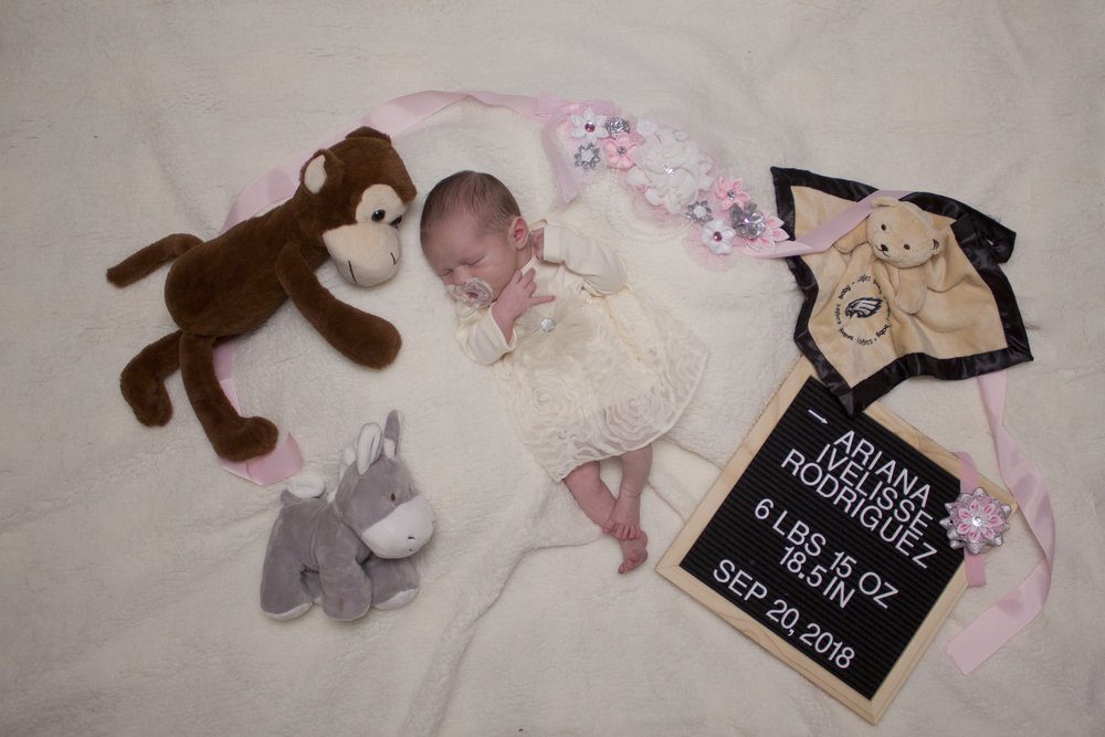 Sweet newborn baby girl session in Southern New Jersey. I love the letterboard with her birth stats!