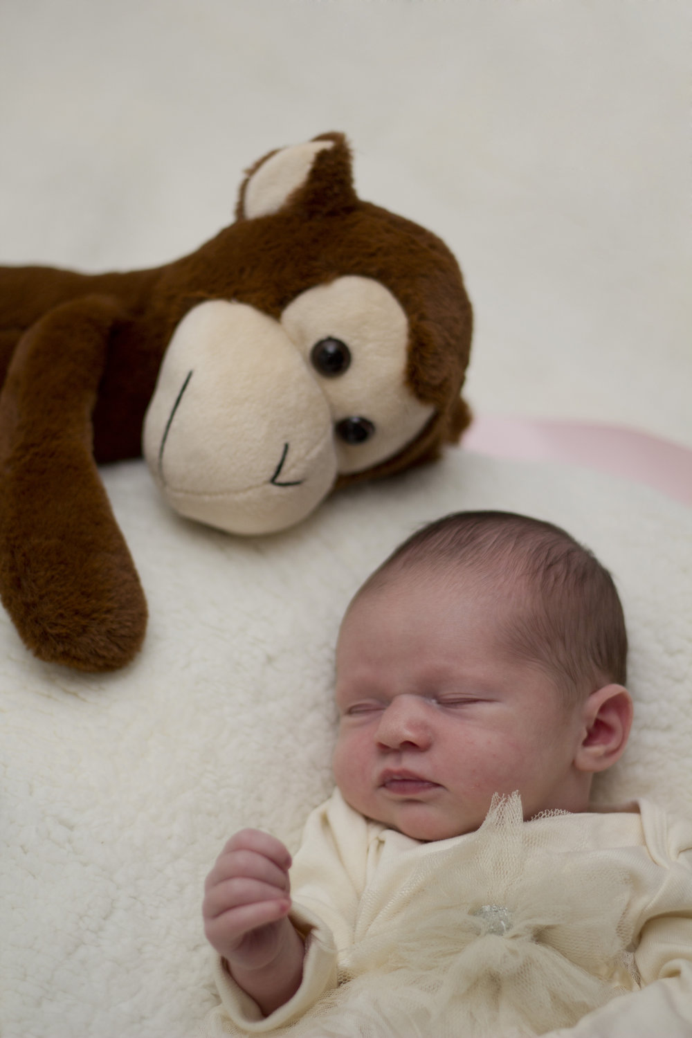 Sweet newborn baby girl session in Southern New Jersey. Look at how the little monkey is watching over her!